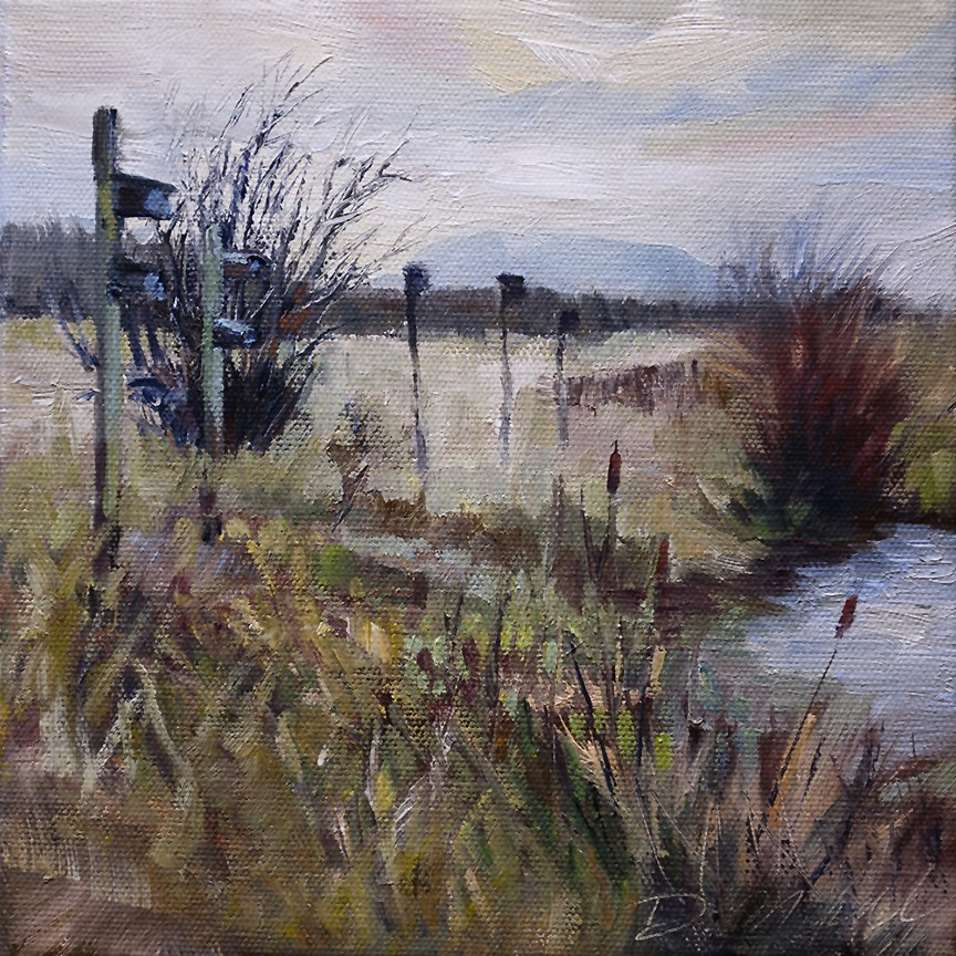 """Another Rainy Day Marsh Scene"" original fine art by Denise Maxwell"