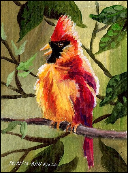 """The Angry Cardinal"" original fine art by Patricia Ann Rizzo"