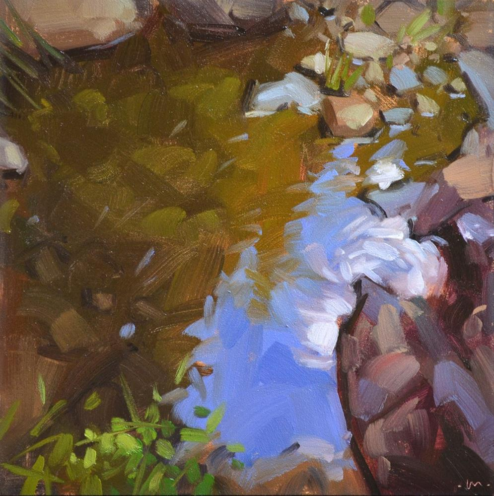 """Reflections in a Puddle"" original fine art by Carol Marine"
