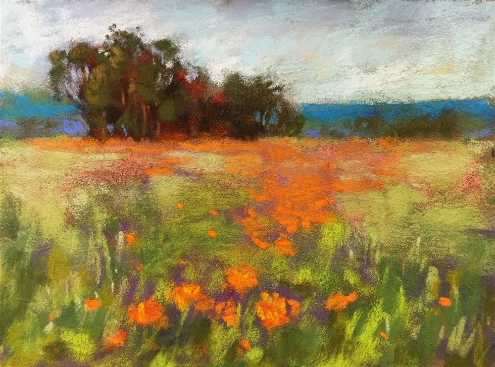 """Poppy Field"" original fine art by Sherri Cassell"