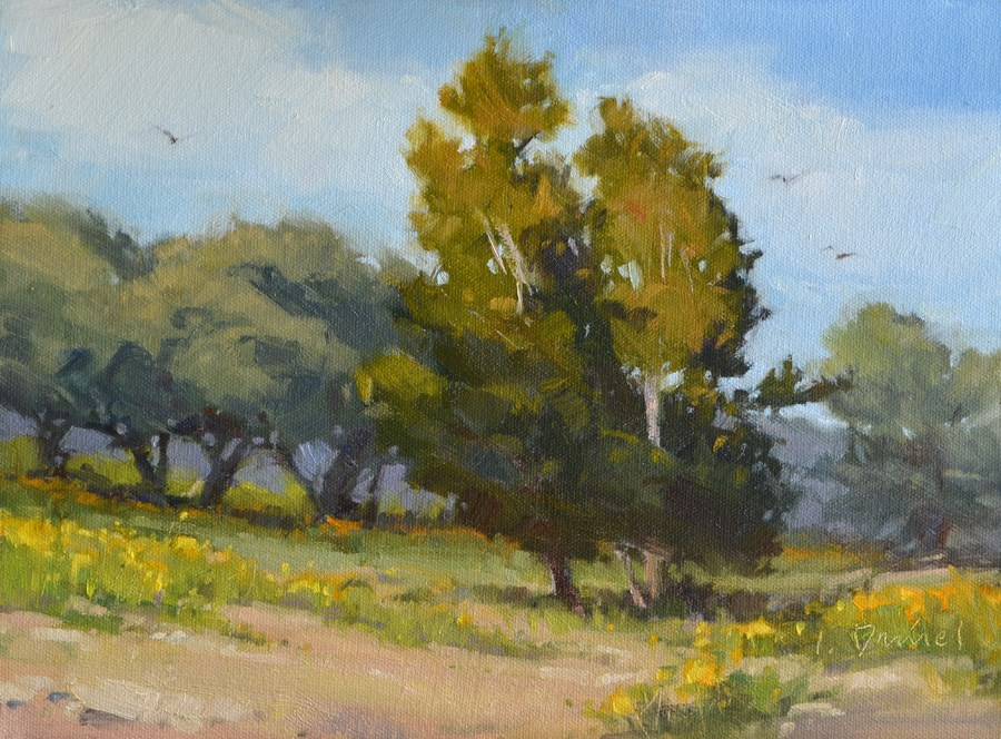 """Rolling Meadow - Kerrville Outdoor Painting Event"" original fine art by Laurel Daniel"
