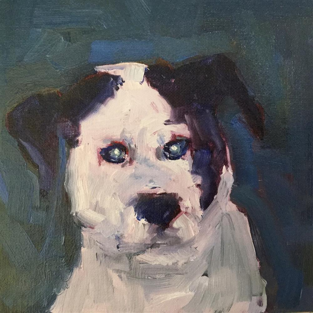 """""""Abbott"""" original fine art by Barb Walker"""
