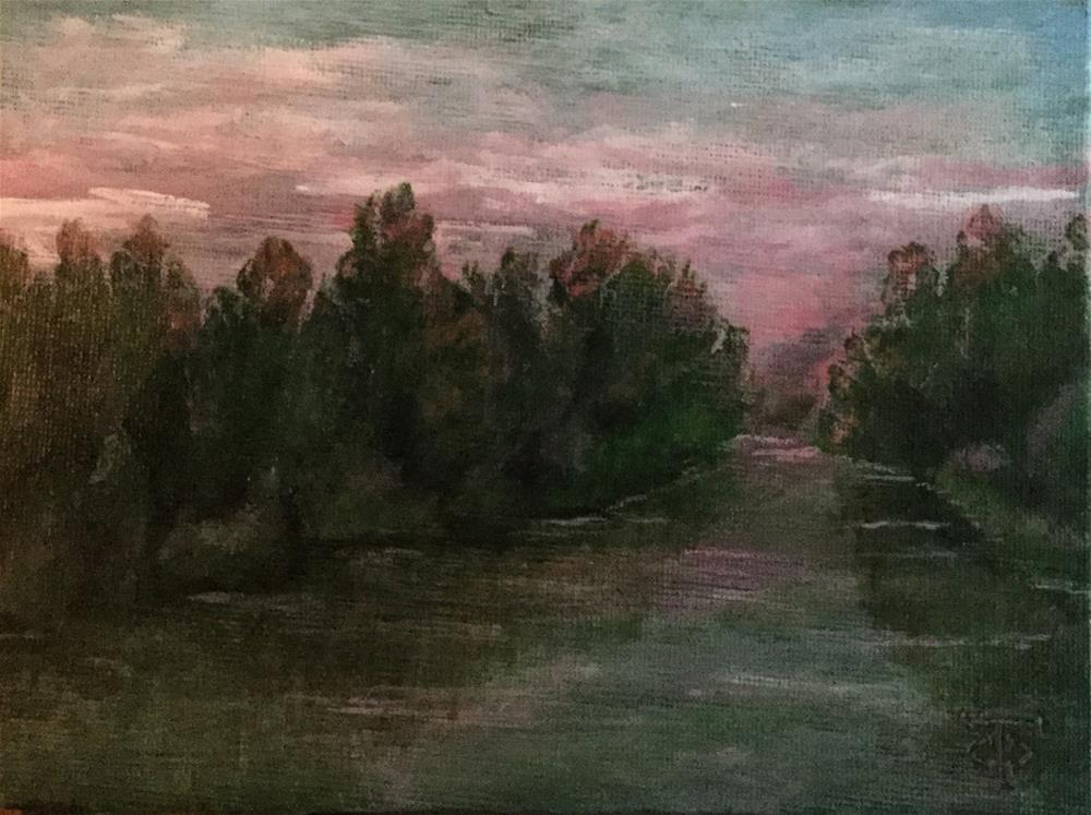 """Ogeechee Pink"" original fine art by T.C. Poole"