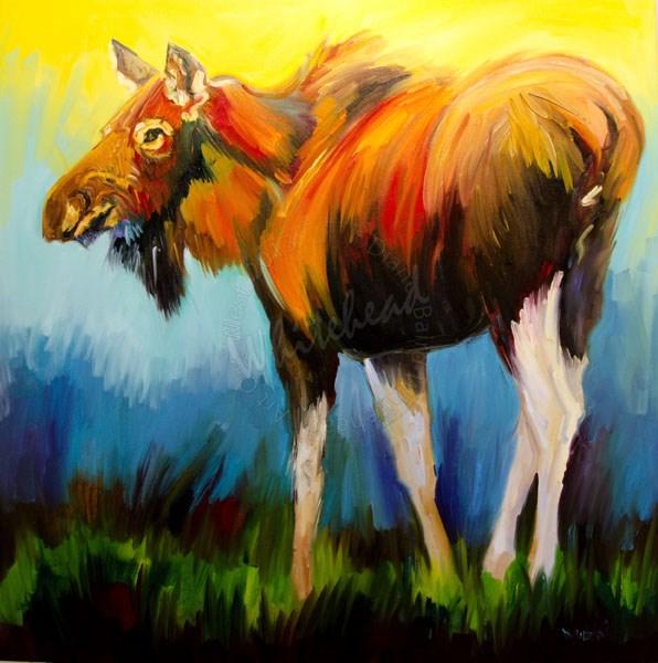 """""""ARTOUTWEST DIANE WHITEHEAD WILDLIFE ART OIL PAINTING MOOSE CHROMA"""" original fine art by Diane Whitehead"""