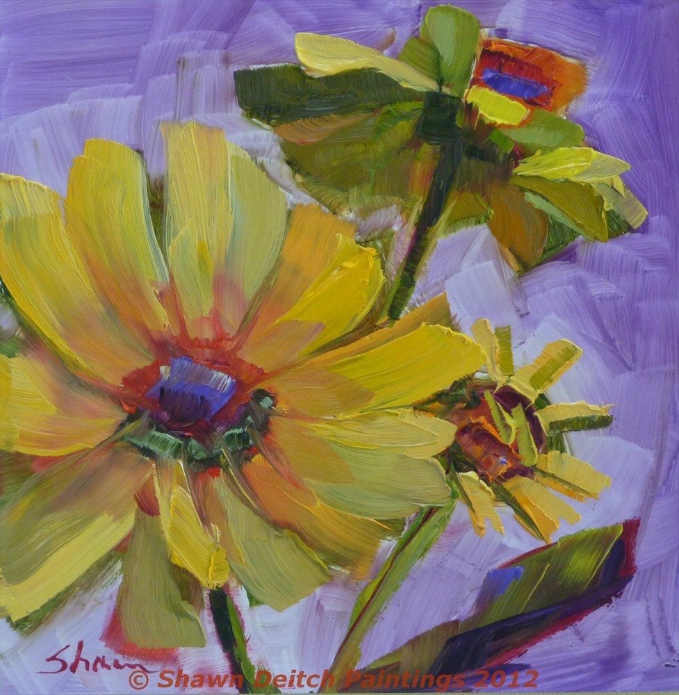 """Brittlebush Blooms - Shawn Deitch"" original fine art by Shawn Deitch"