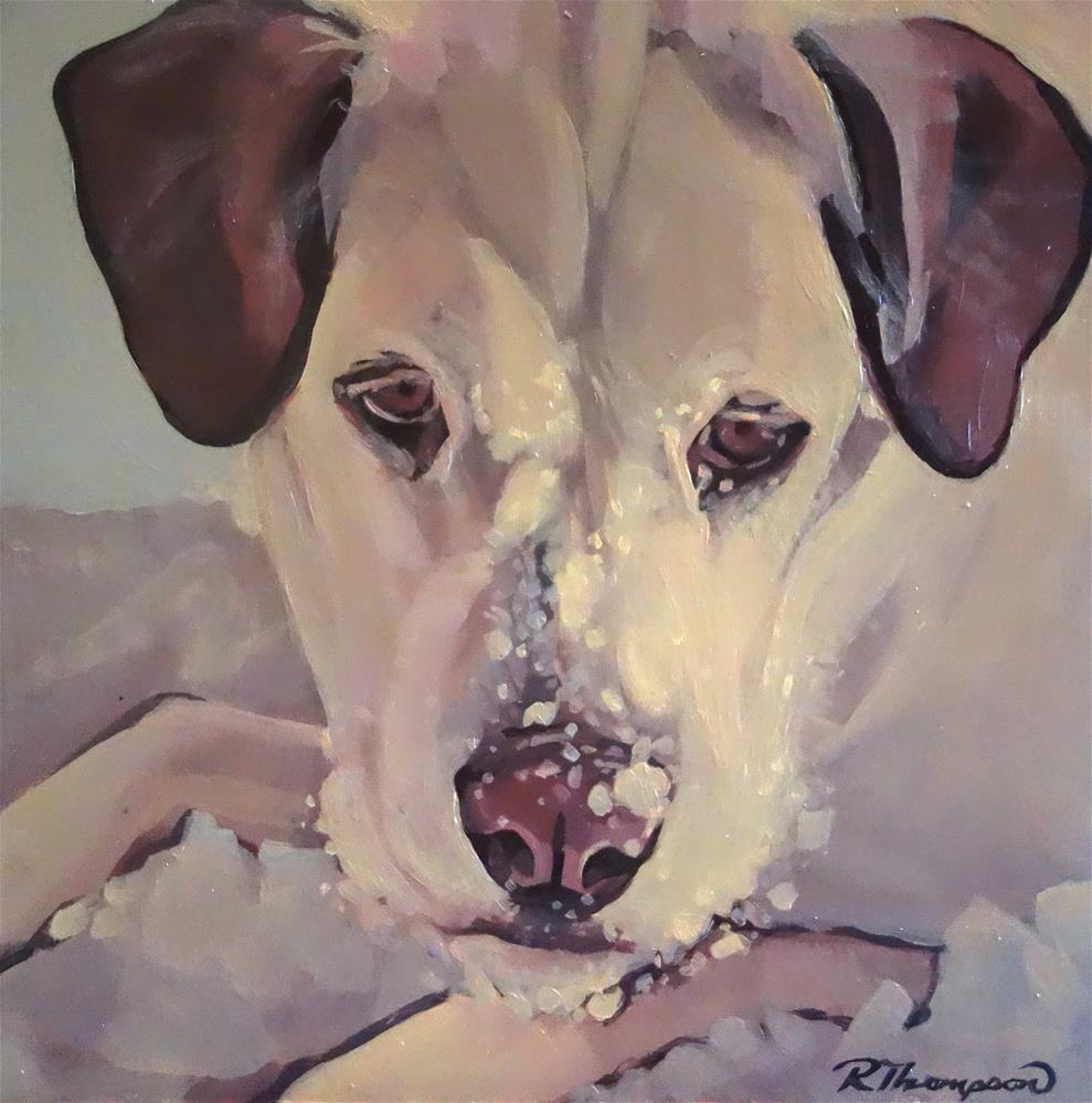 """Sadie"" original fine art by Rachel Thompson"