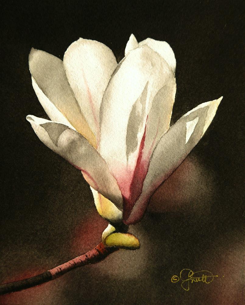 """Spring Magnolia"" original fine art by Jacqueline Gnott, TWSA, WHS"