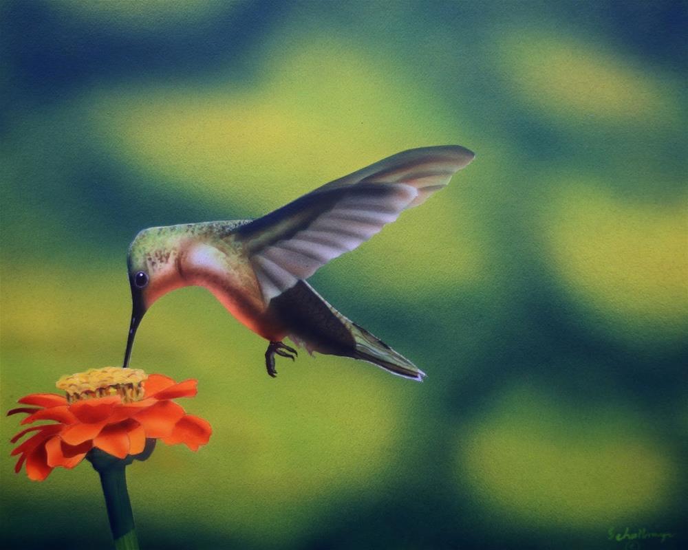 """Hummingbird with Zinnia"" original fine art by Fred Schollmeyer"