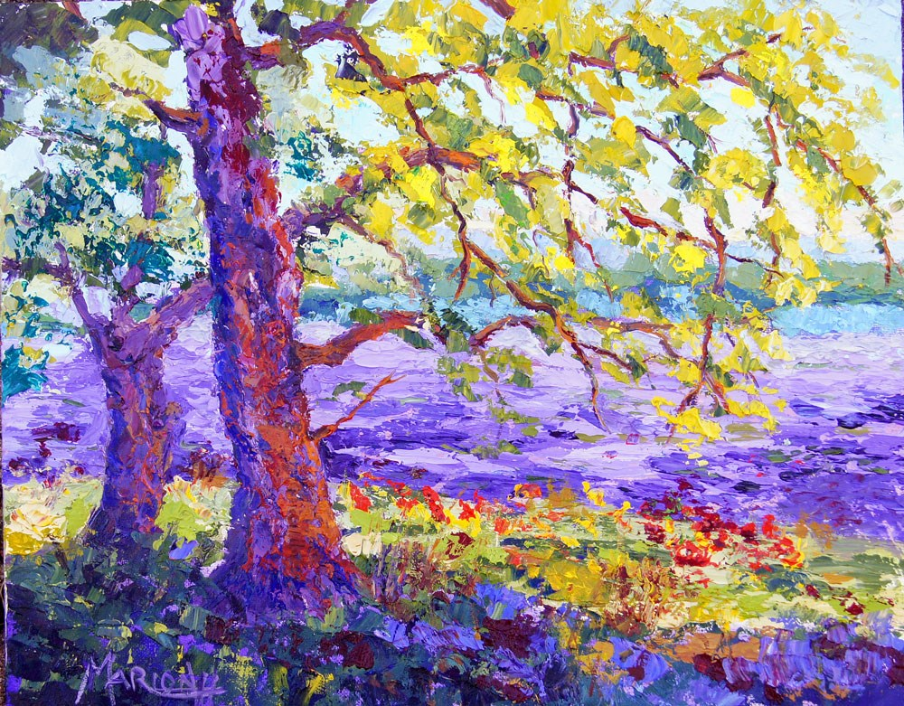 """Sunlit Tree"" original fine art by Marion Hedger"