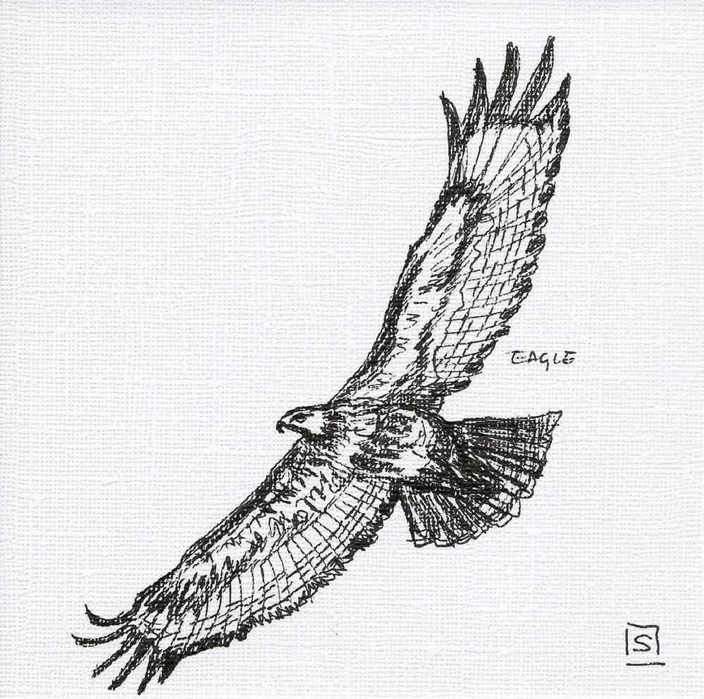 """6057 - Eagle"" original fine art by Sea Dean"