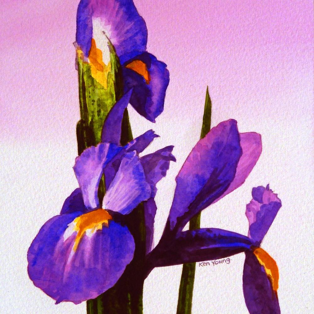 """Violet Iris"" original fine art by Ken Young"