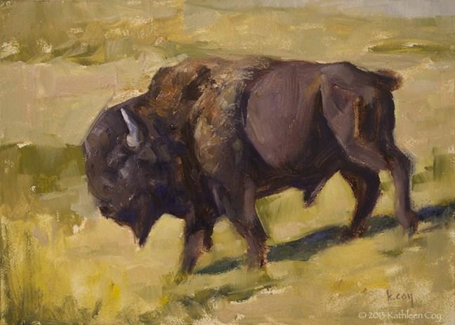 """Bison Study"" original fine art by Kathleen Coy"