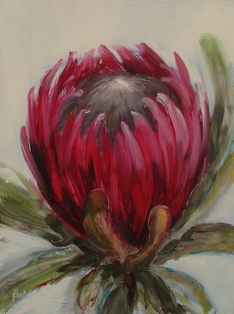 """Daily painting #724 Crimson protea"" original fine art by Heidi Shedlock"