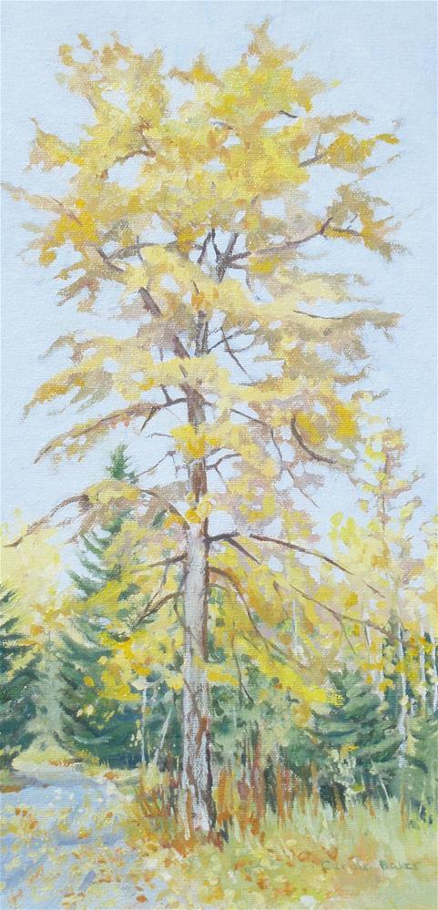 """""""Cottonwood in Fall"""" original fine art by Carole Baker"""