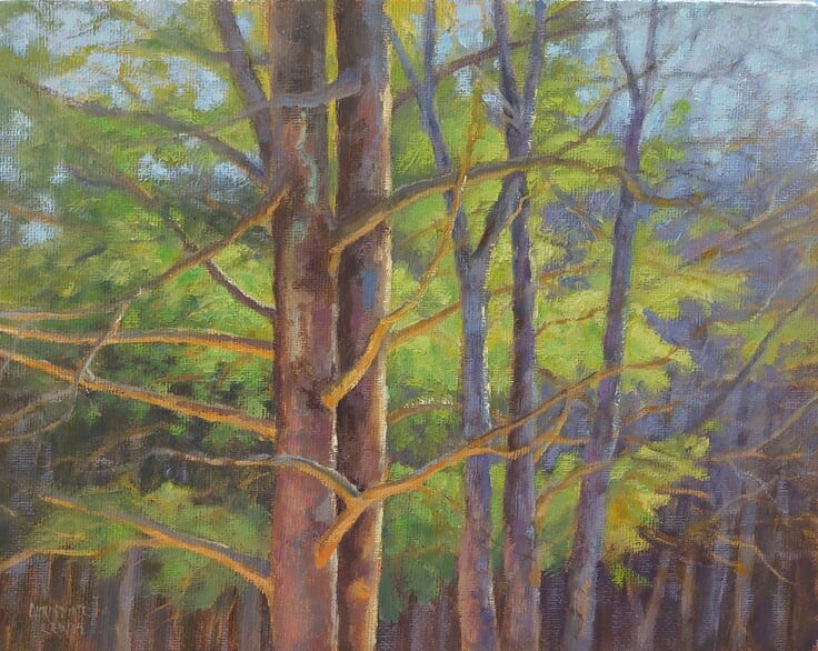 """Maine Pine Beauties"" original fine art by Christine Lewis"