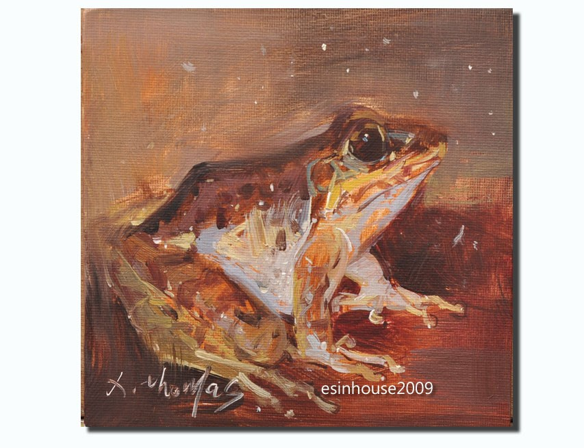 """frog"" original fine art by Thomas Xie"