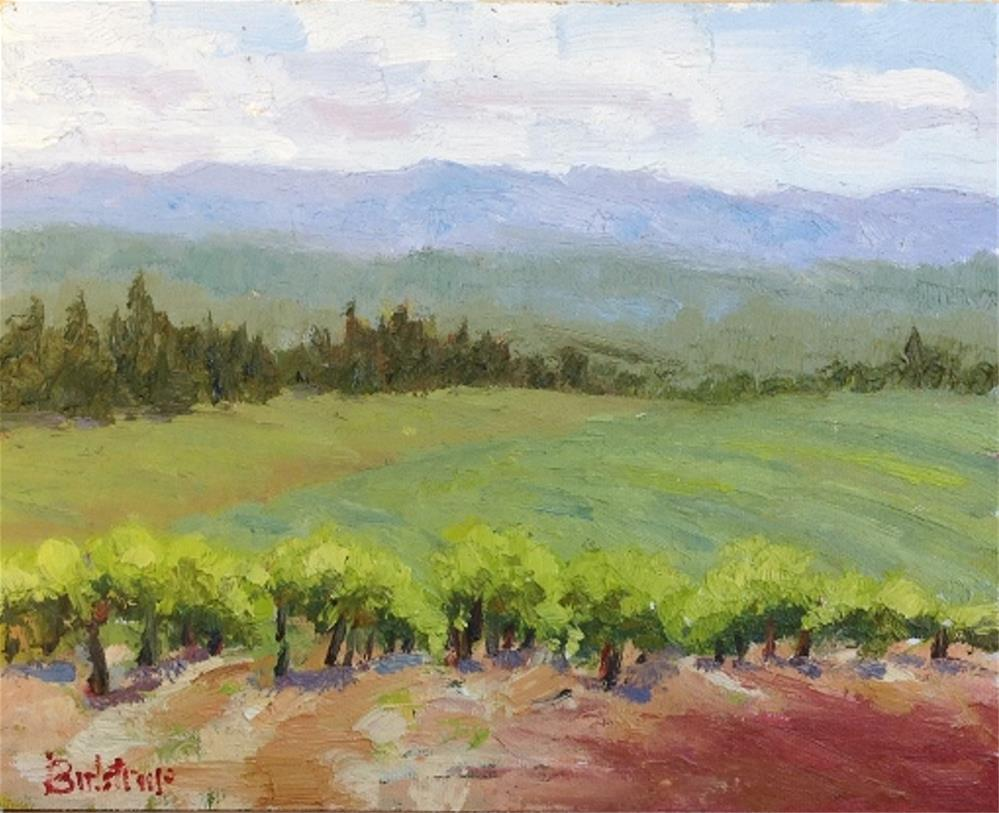 """Georgetown Vineyard - Spring"" original fine art by Mark Bidstrup"