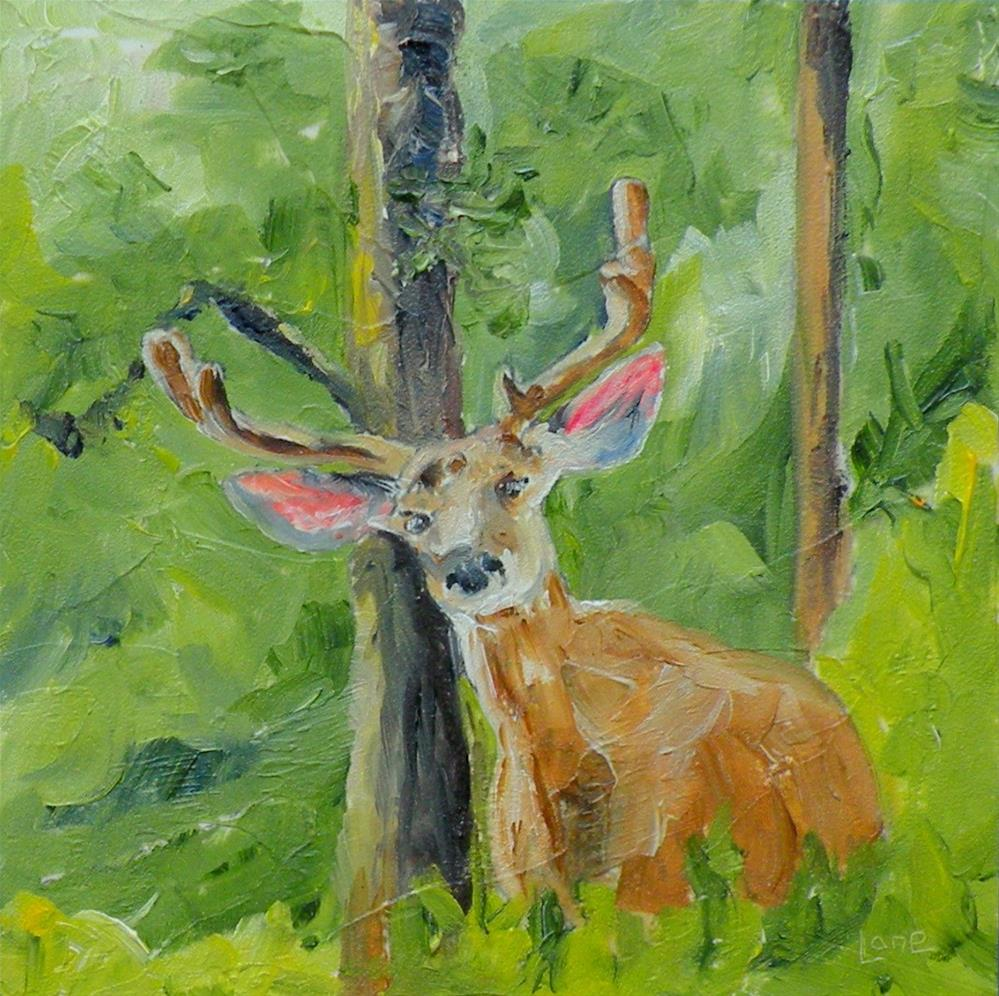 """CURIOUS BUCK ORIGINAL OIL ON SLIGHTLY TEXTURED 4X4 PANEL; FRAMED © SAUNDRA LANE FINE ART"" original fine art by Saundra Lane Galloway"