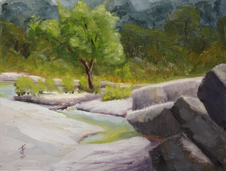 """Bull Creek Island"" original fine art by Jane Frederick"