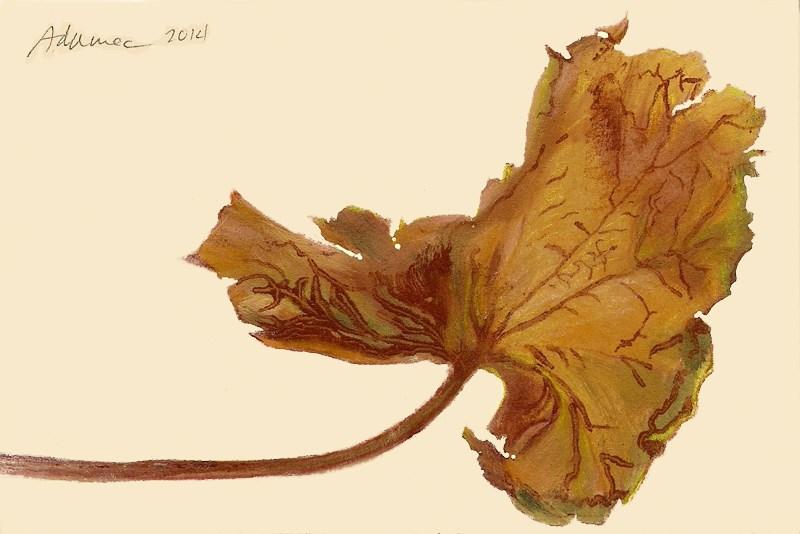 """Dried Leaf #2"" original fine art by Carol L Adamec"