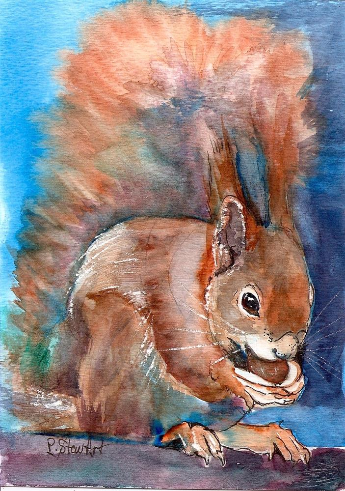 """5x7 Red Squirrel Eating Acorn Watercolor and Pen by Penny Lee StewArt"" original fine art by Penny Lee StewArt"