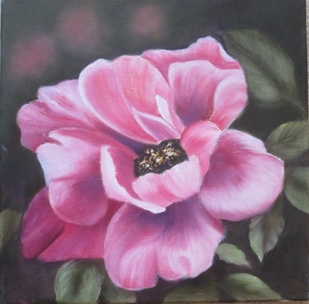 """Tree Peony - Pink Study"" original fine art by Barbara Wagner"