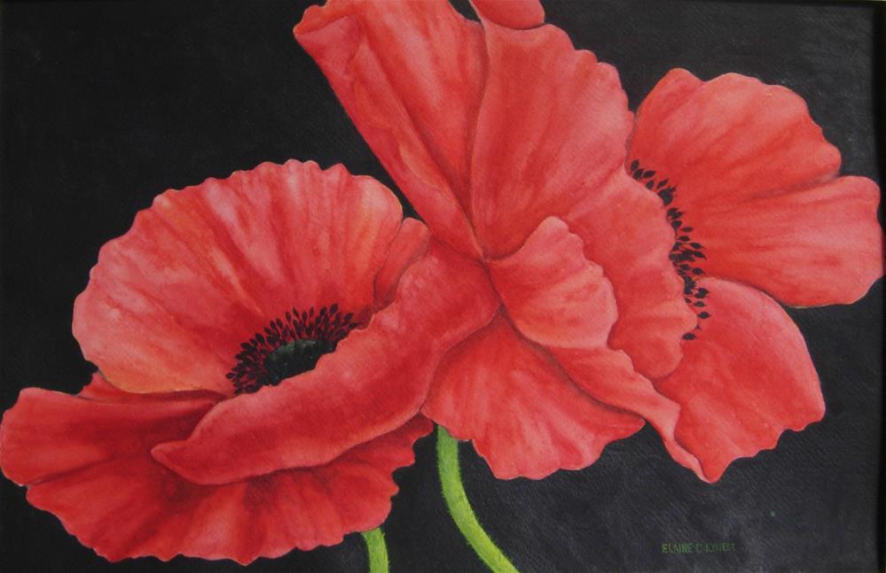 """Red Poppies"" original fine art by Elaine Lynest"