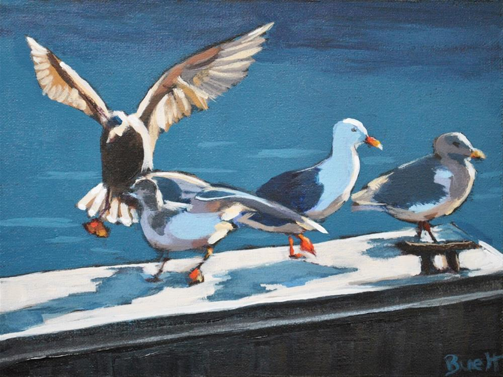 """Seagull Confrence"" original fine art by Shari Buelt"