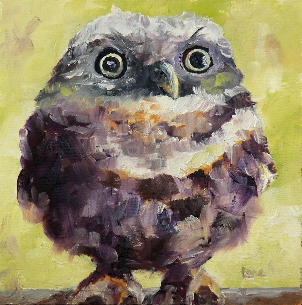 """WIDE EYES - AN OWL ORIGINAL MINI OIL ON TEXTURED CRADLE © SAUNDRA LANE GALLOWAY"" original fine art by Saundra Lane Galloway"