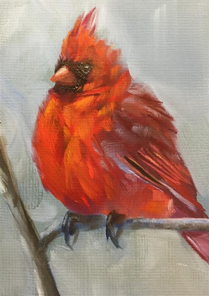 """Winter Cardinal"" original fine art by Gary Bruton"