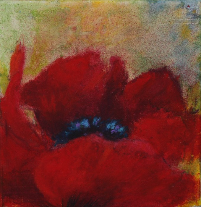 """Persistent Poppy"" original fine art by Jana Johnson"