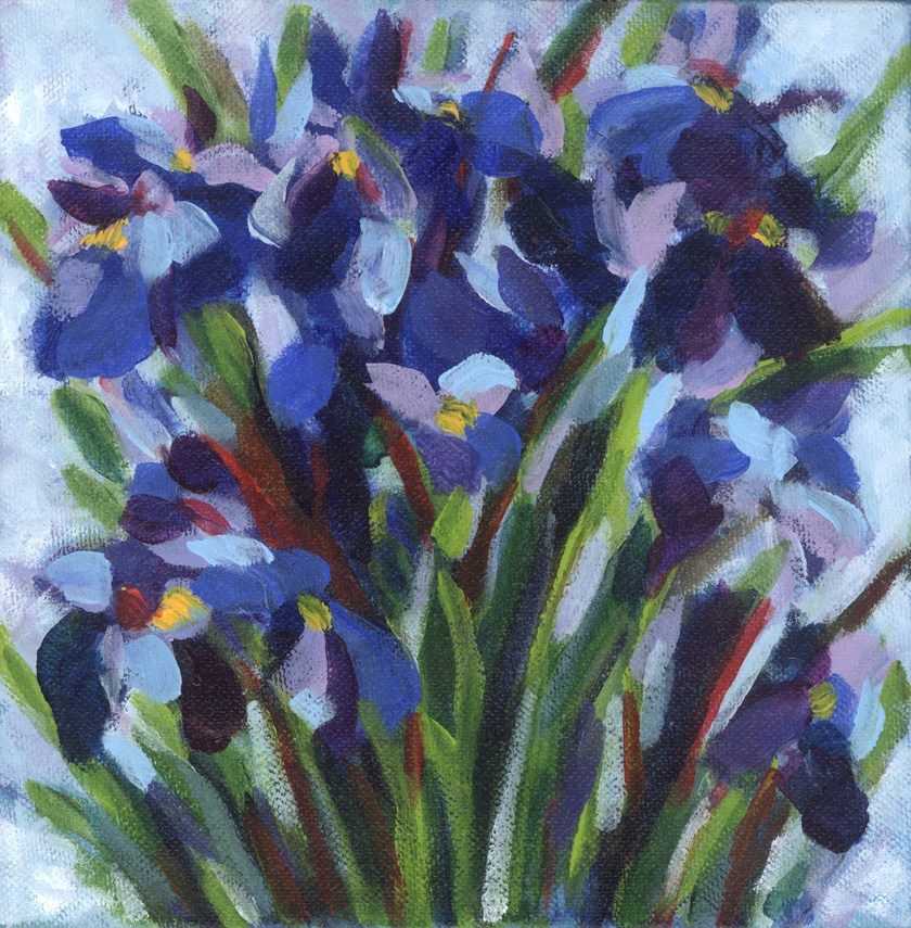 """Indigo Irises"" original fine art by Pamela Gatens"