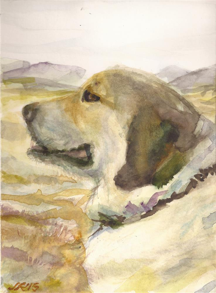 """Snap the Anatolian Shepherd"" original fine art by Jean Krueger"