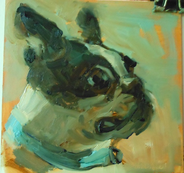 """Buster"" original fine art by Brande Arno"