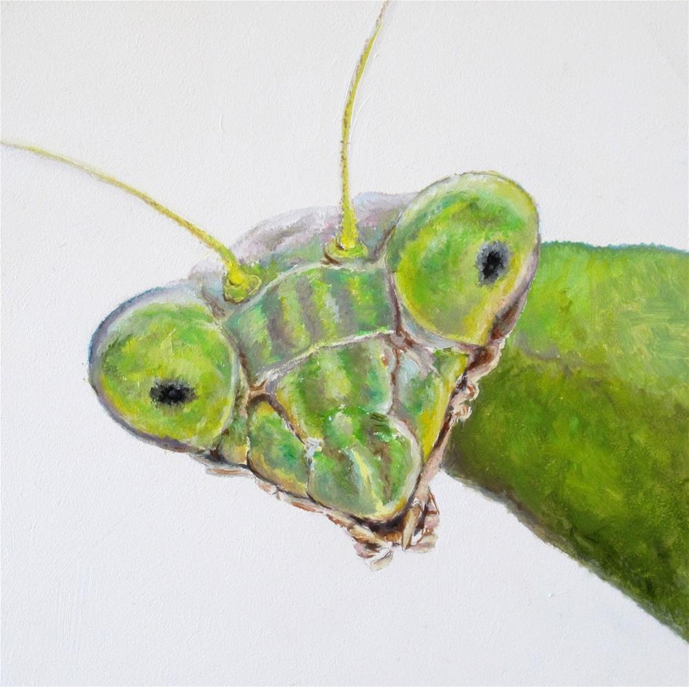 """""""Praying Mantis"""" original fine art by Linda Demers"""