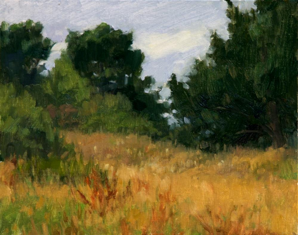 """Summer Grasses At the Marsh"" original fine art by Kathy O'Leary"
