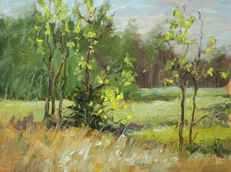 """autumn saplings"" original fine art by Priscilla Olson"