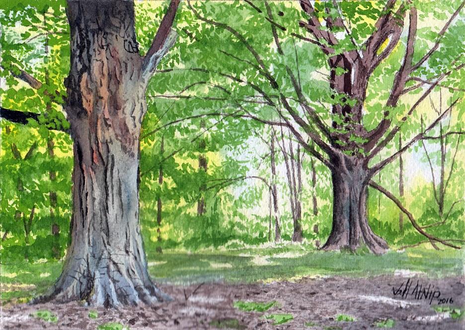 """""""Two Maples"""" original fine art by Jeff Atnip"""