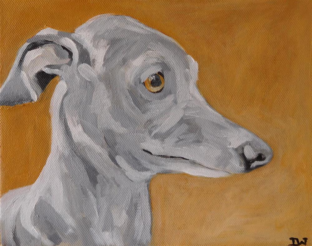 """Whippet"" original fine art by Daryl West"