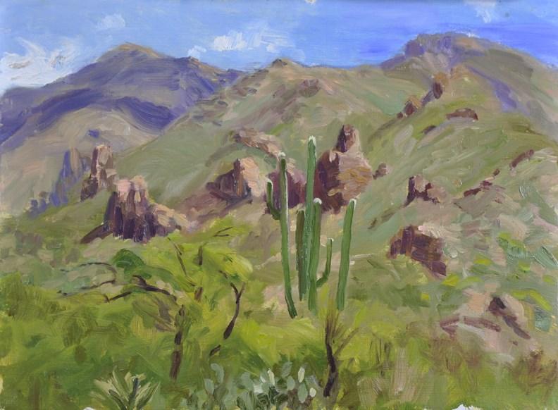 """Ventana Canyon"" original fine art by Scott Harding"