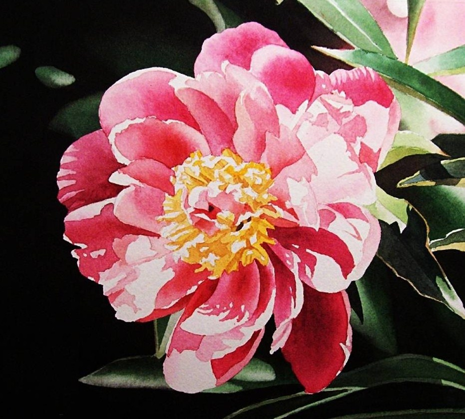 """Pink Peony III & DVD Sale ends tomorrow night."" original fine art by Jacqueline Gnott, whs"