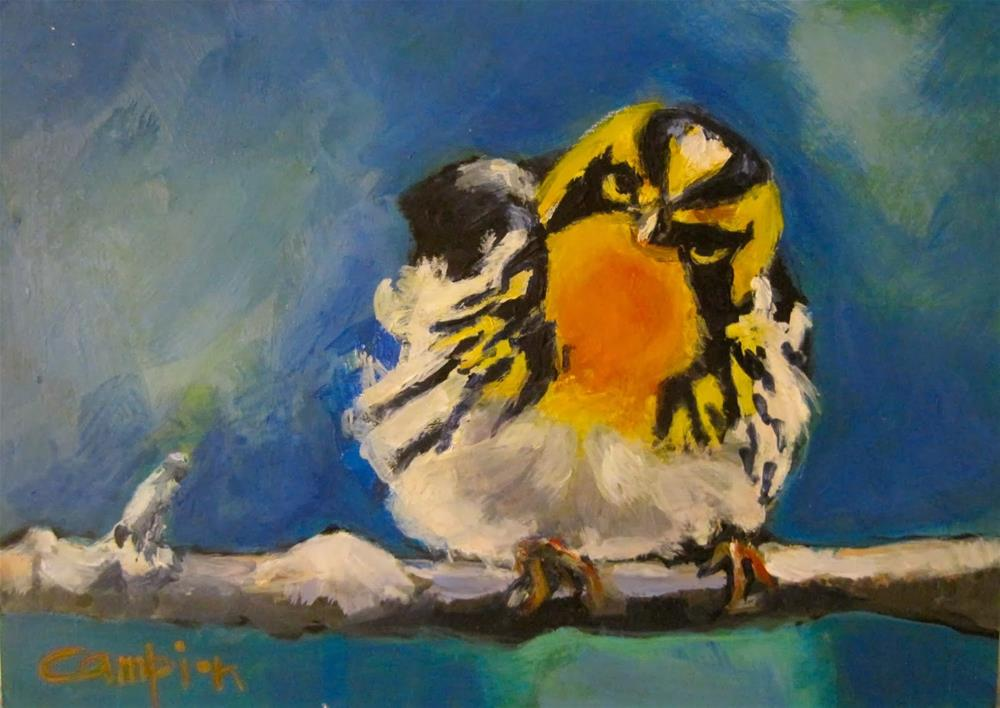 """238 Blackburnian Warbler"" original fine art by Diane Campion"