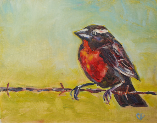 """Bird on A Wire"" original fine art by Carol DeMumbrum"