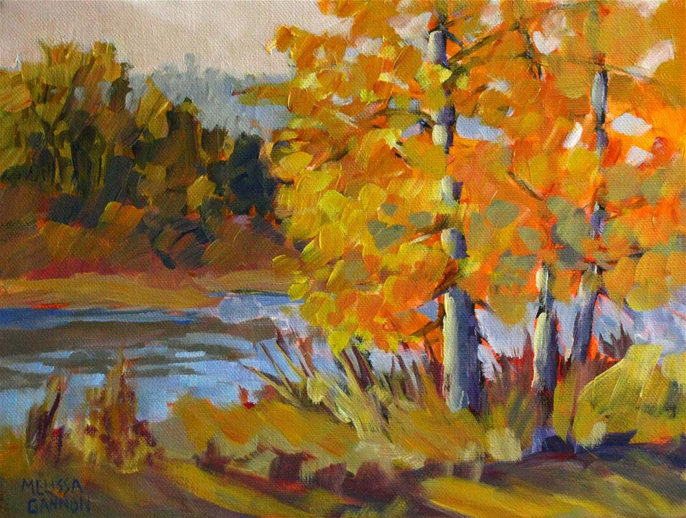 """Cottonwoods on the Riverbank"" original fine art by Melissa Gannon"