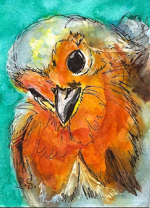 """ACEO Cutest Baby Bird Illustration Painting Original WC pen ink by Penny StewArt"" original fine art by Penny Lee StewArt"