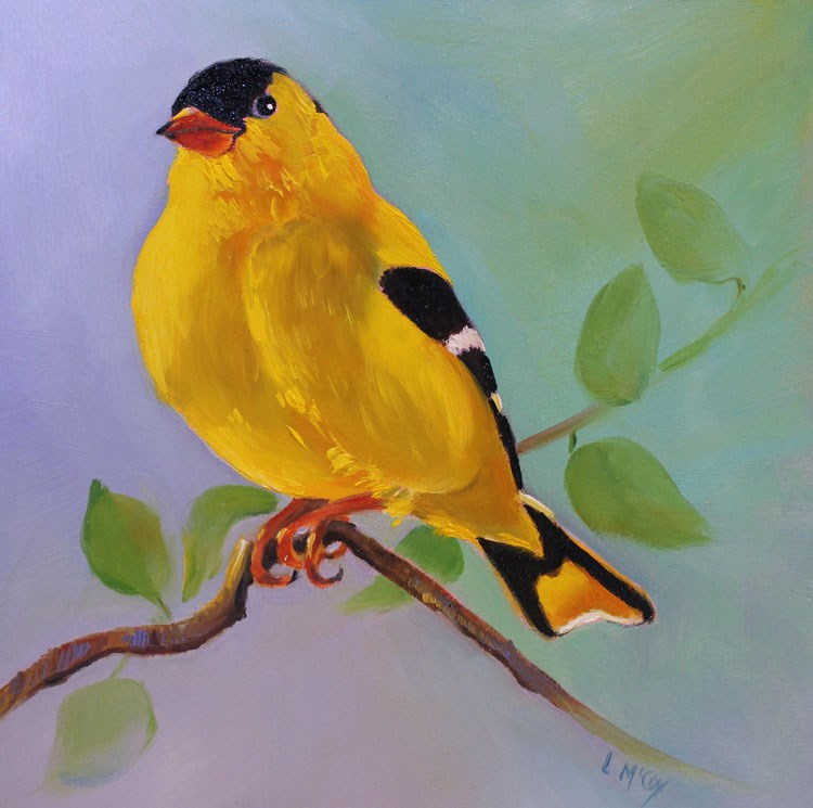 """Finch, Oil Painting by Linda McCoy"" original fine art by Linda McCoy"