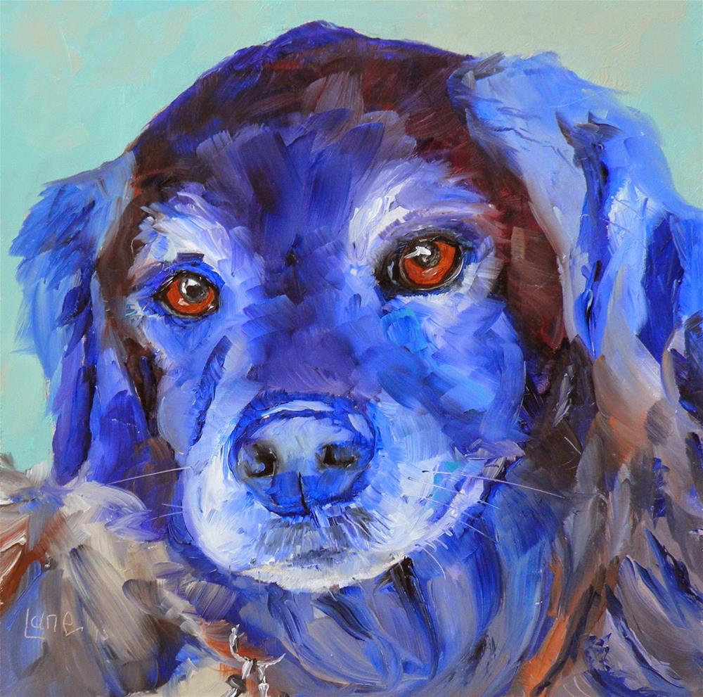 """HUCKLEBERRY 81/101 OF 101 PET PORTRAITS IN 101 DAYS © SAUNDRA LANE GALLOWAY"" original fine art by Saundra Lane Galloway"