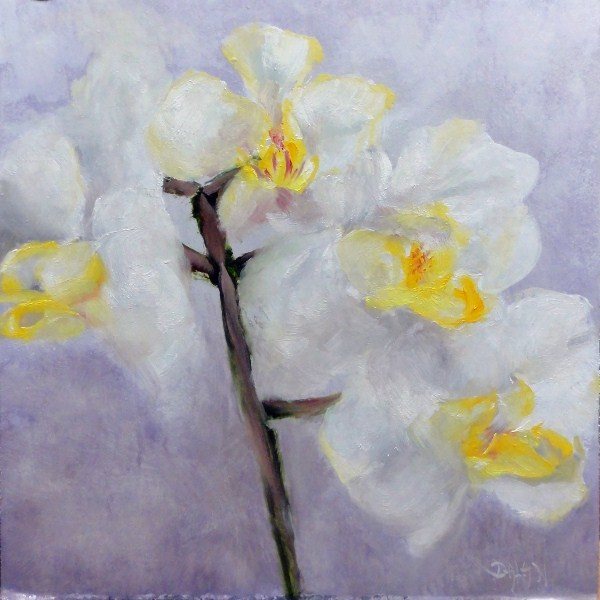 """Orchids, White On White Challenge"" original fine art by Dalan Wells"