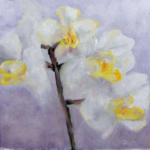 """Orchids, White On White Challenge"" original fine art by Dalan Wells"