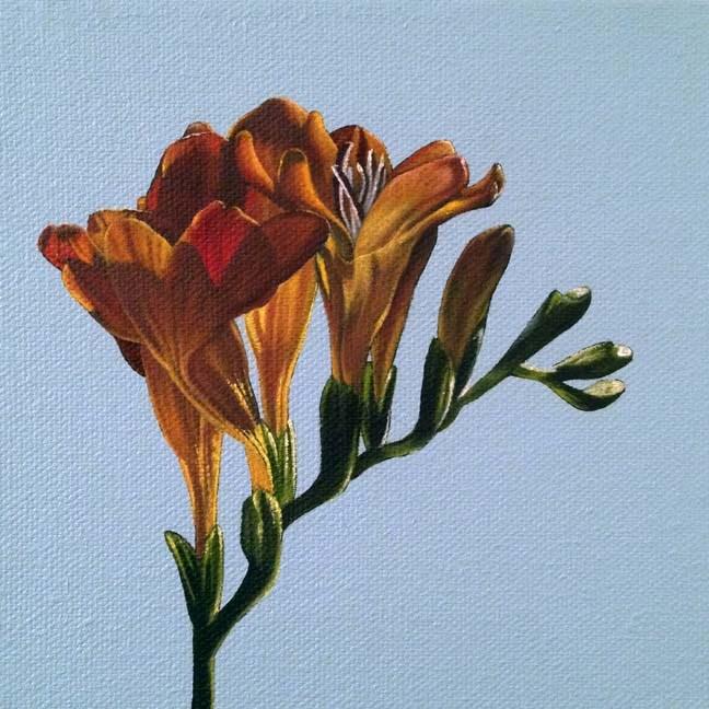 """Pretty Things II"" original fine art by Jelaine Faunce"